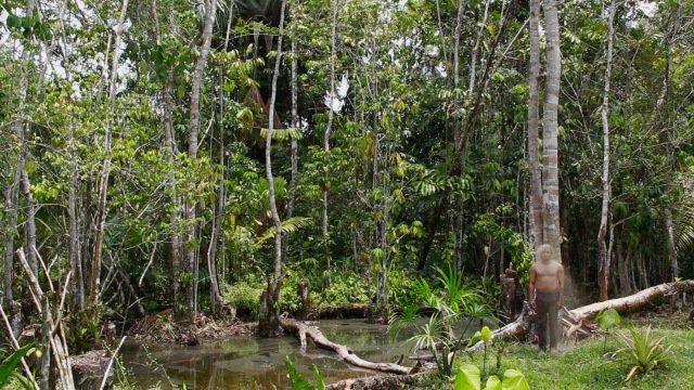 Biofilia Amazonas n